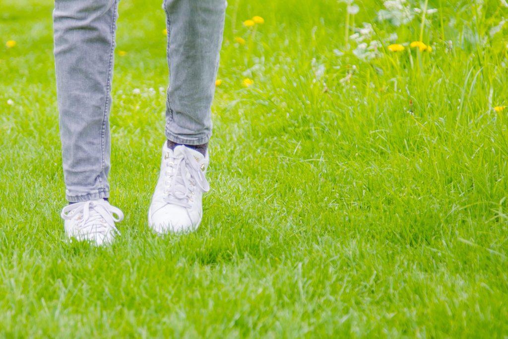 inspiratiewandeling - wandelcoach